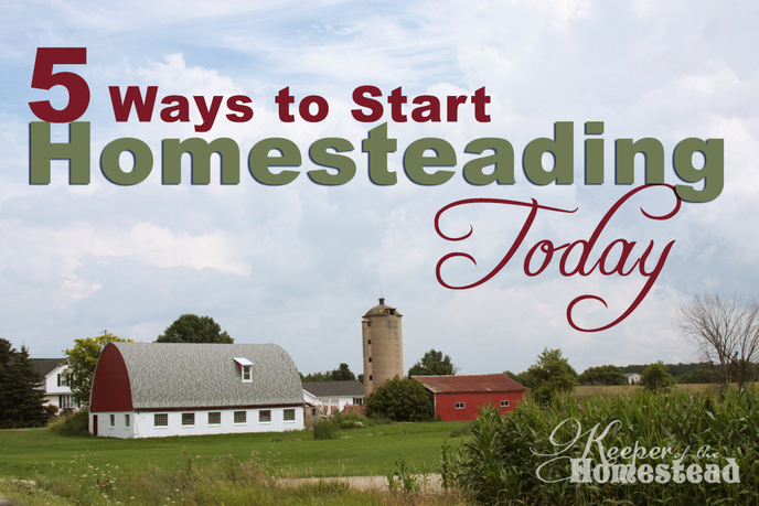 5 ways to start homesteading today keeper of the homestead for How to start homesteading today